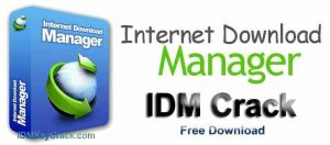 Internet Download Manager 6.39 Crack With Serial Number Free Download