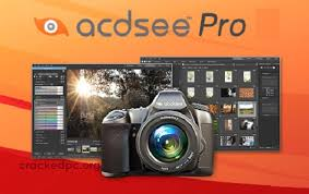 ACDSee Pro 10.3 Crack + Activation Key Free Download Full Version